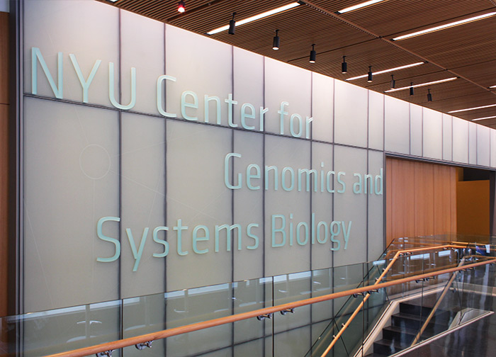 New York University Center for Genomics and Systems Biology
